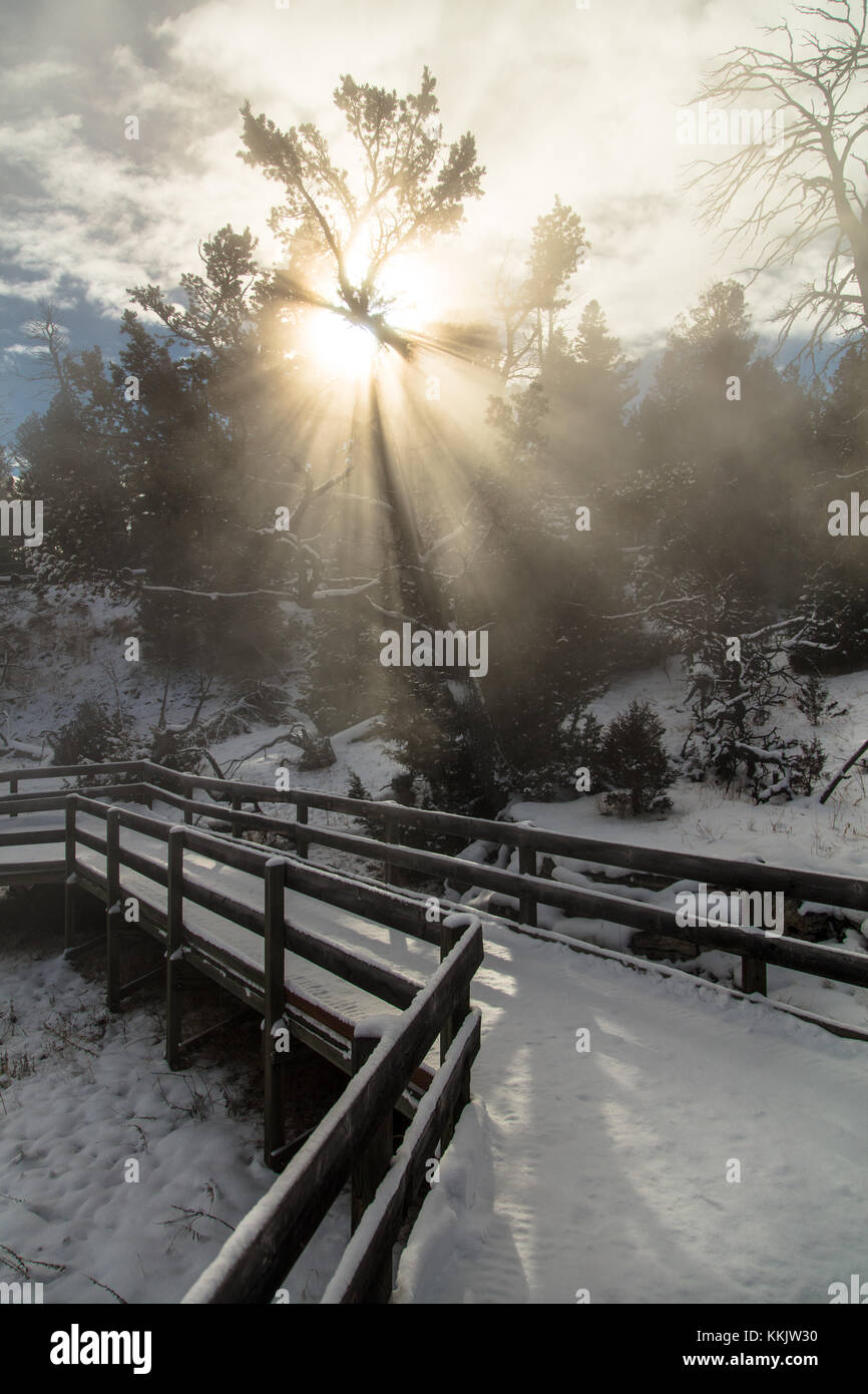 The sun rises over the snow-covered boardwalk to Canary Spring at the Yellowstone National Park in winter December 2, 2016 in Wyoming.  (photo by Jacob W. Frank via Planetpix) Stock Photo
