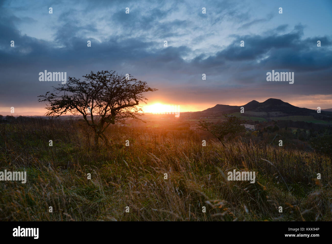 Scott's View in the Scottish Borders, overlooking the valley of the River Tweed, towards the Eildon Hills - Stock Image
