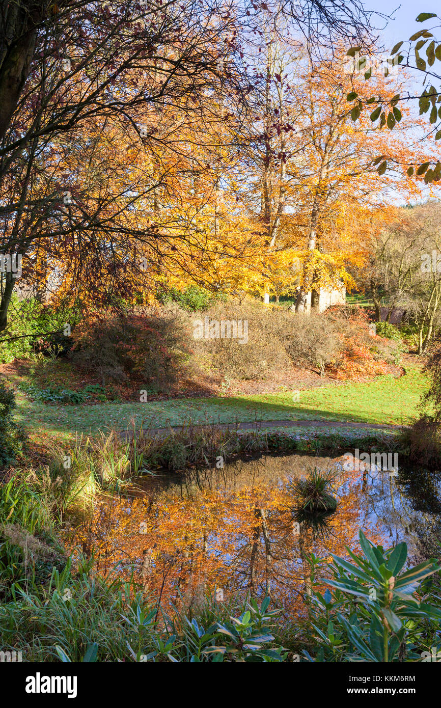 An autumn morning at Mount Grace Priory, East Harlsey, North Yorkshire UK - Stock Image