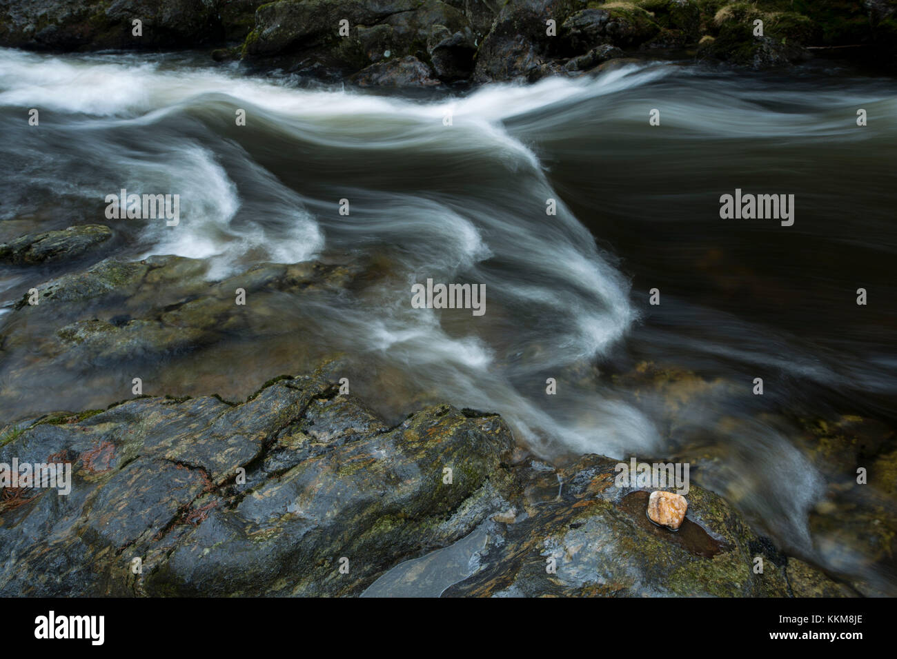 Stream course of the Schwarzer Regen, Bavarian Forest, Bavaria, Germany, - Stock Image