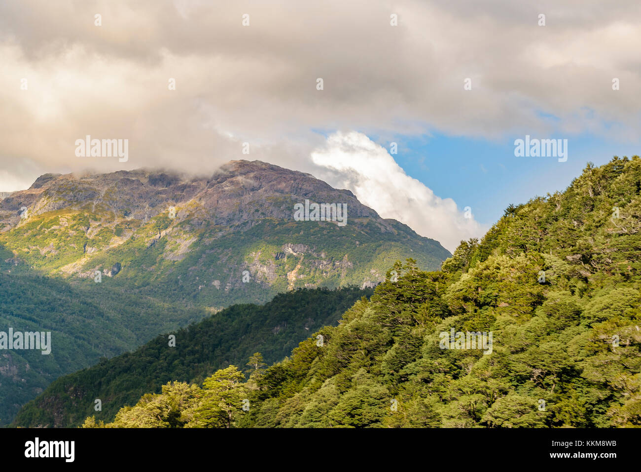 Forest and andes mountains landscape scene at chilean patagonian territory - Stock Image