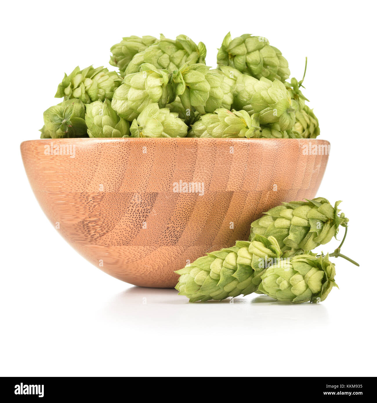 Fresh hops (Humulus lupulus) in wooden bowl isolated on white background. Pile of hops, ingredient for brewery industry. - Stock Image
