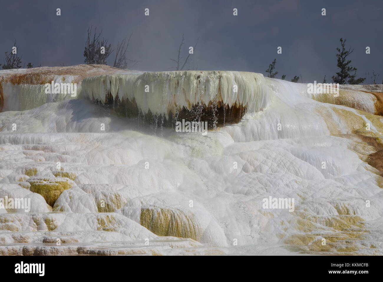 Mammoth Hot Springs, Yellowstone National Park - Stock Image