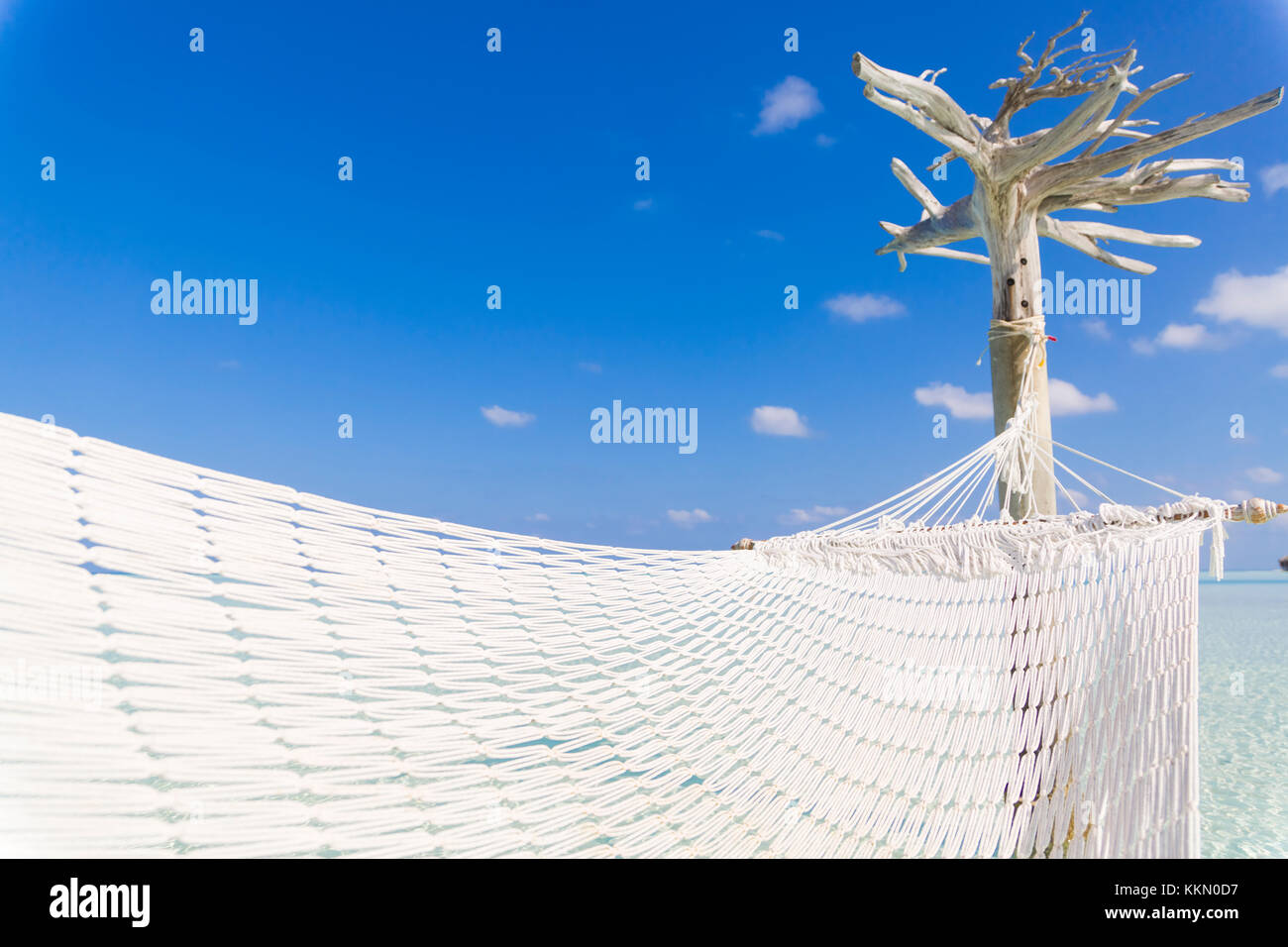 Hammock hold by white tree in a shallow and clear sea. Stock Photo