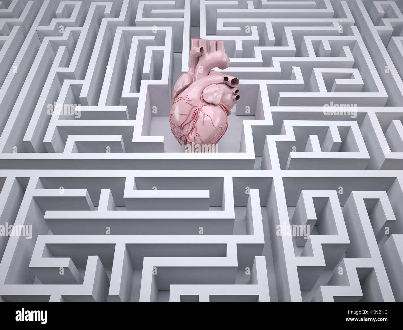 human heart organ in the labyrinth maze, 3d illustration - Stock Image