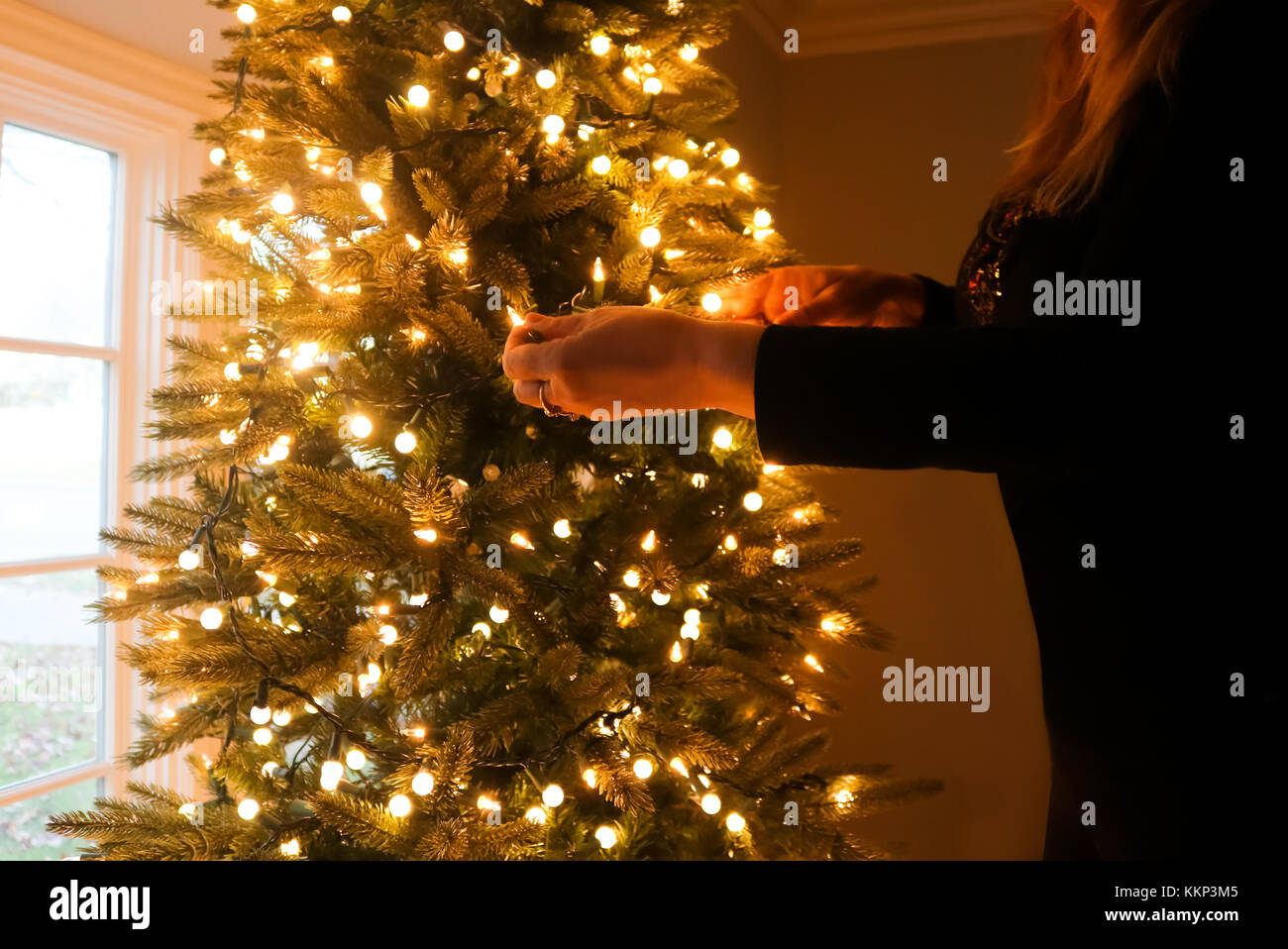 Woman Dressed In Black Decorating Christmas Tree With Lights By Bay