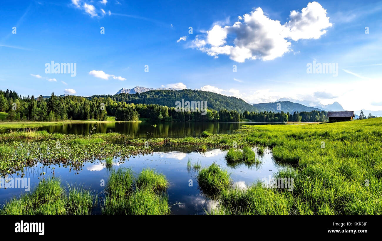Geroldsee, Bavaria, Gerold, Germany, natural beauty, clear water, water lilies - Stock Image