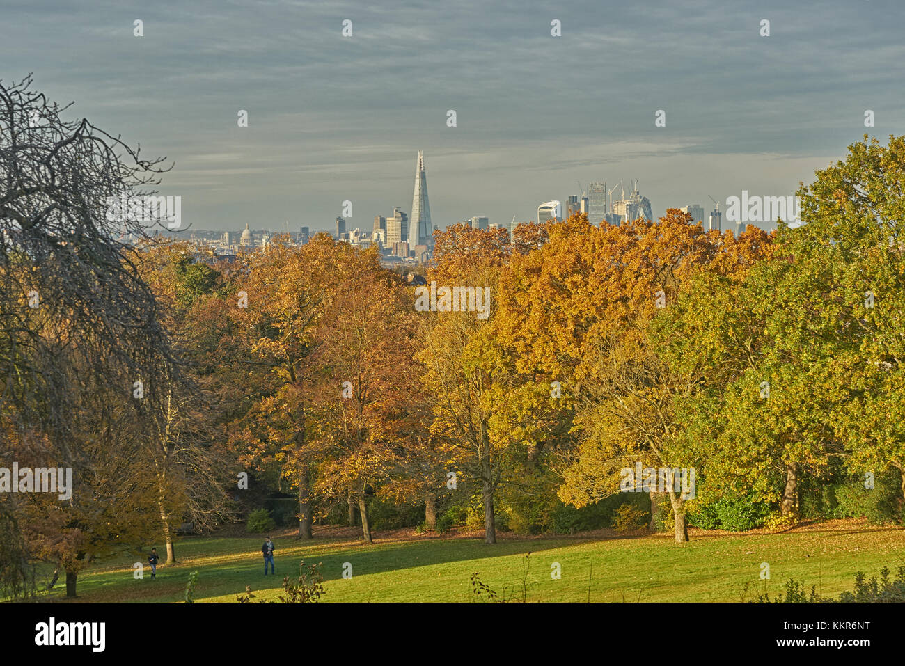 view over london from horniman museum Stock Photo