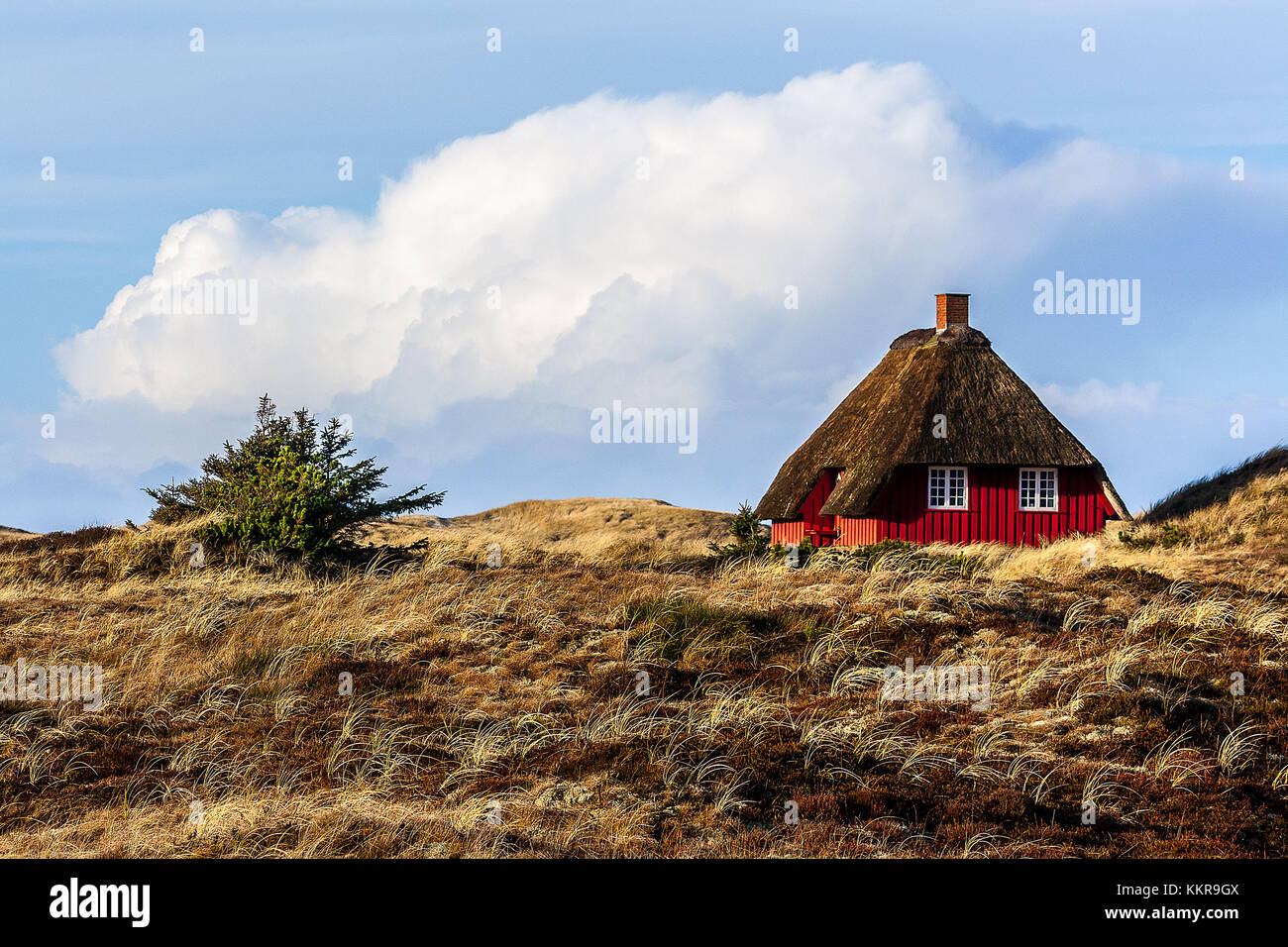 Classical danish house near the village Norre Nebel - Stock Image