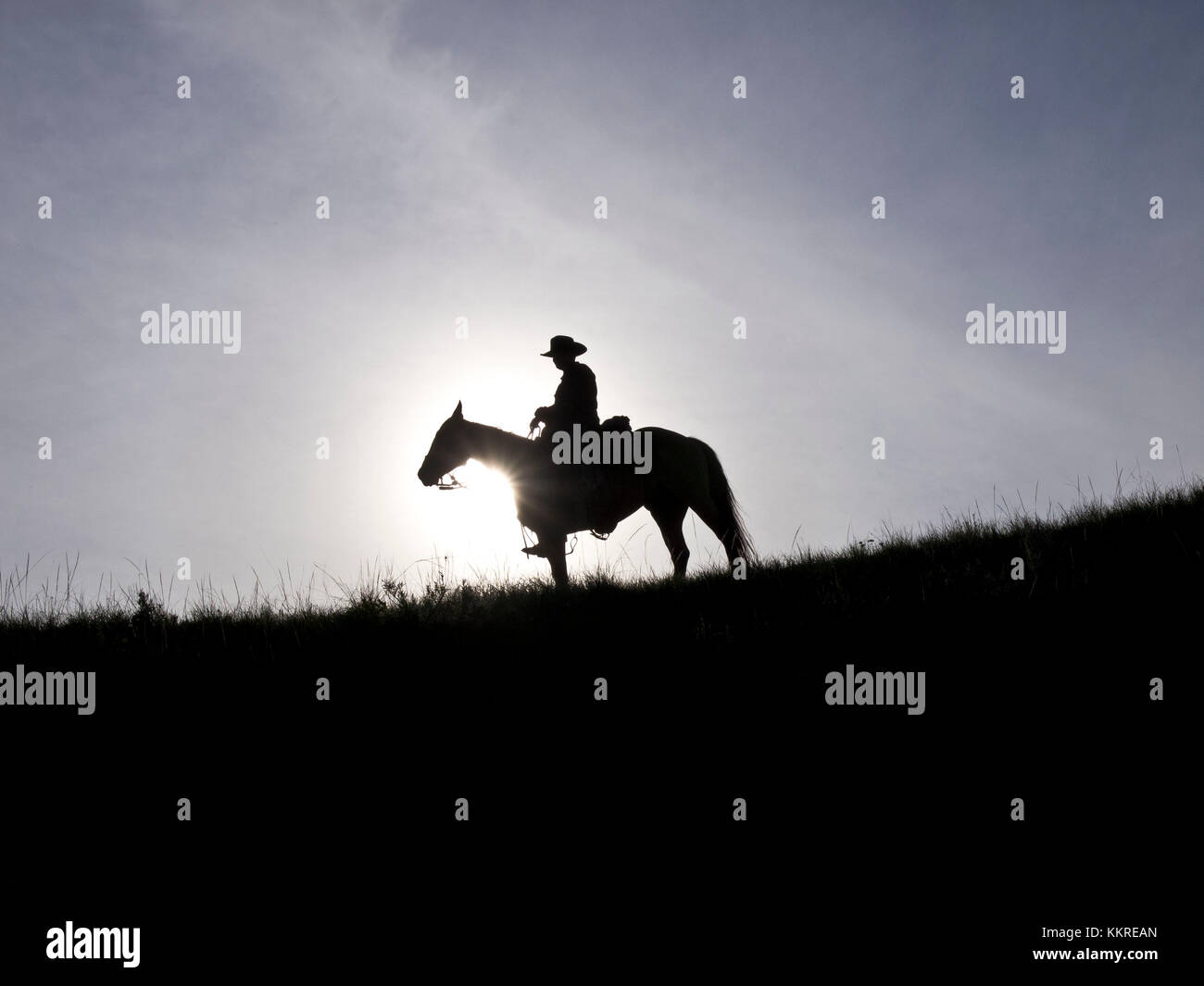 Cowboy And Horse Silhouette Stock Photo Alamy