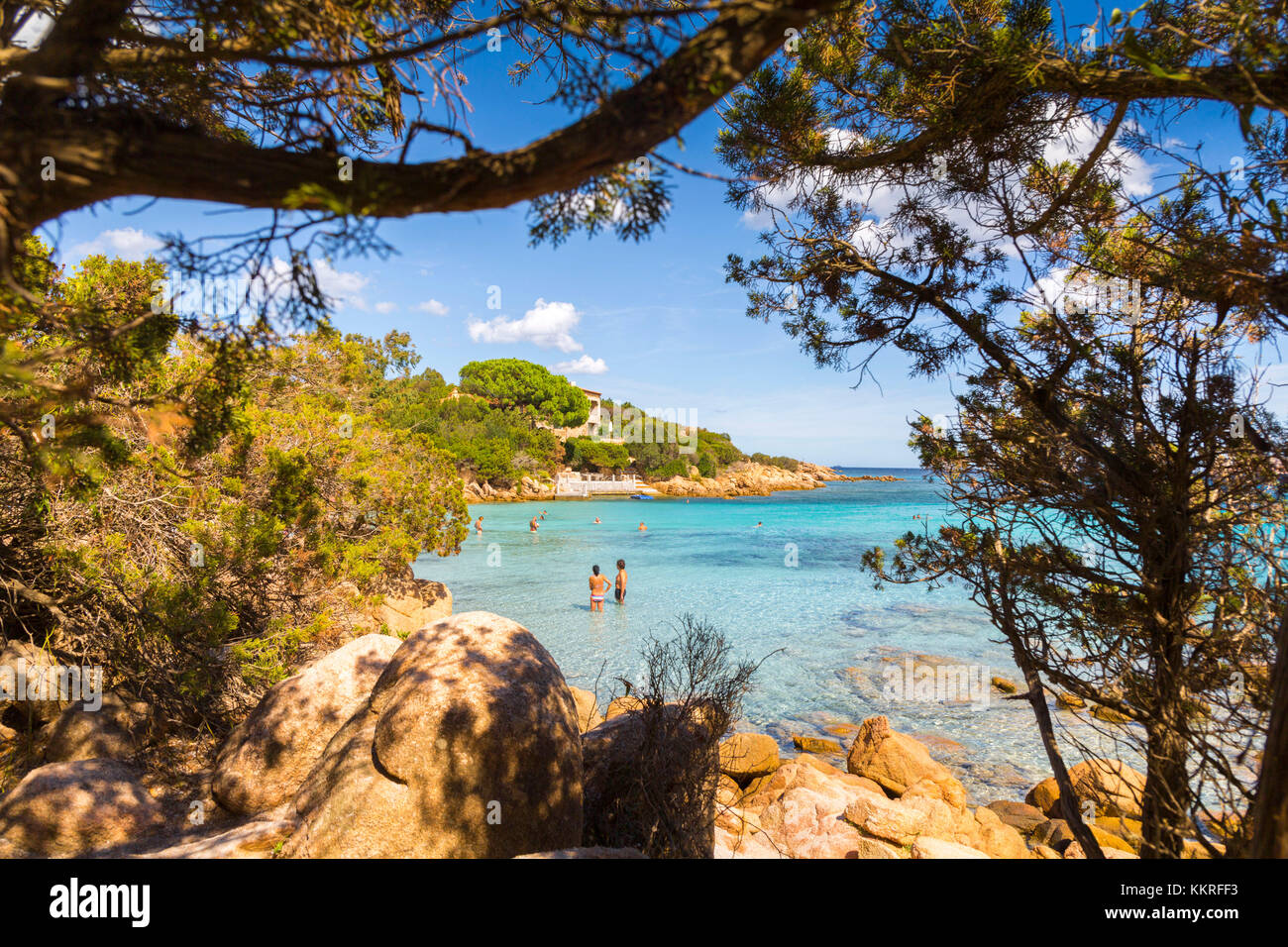 Rocks and trees in Capriccioli beach, Arzachena Costa Smeralda, Olbia-Tempio province, Sardinia district, Italy - Stock Image