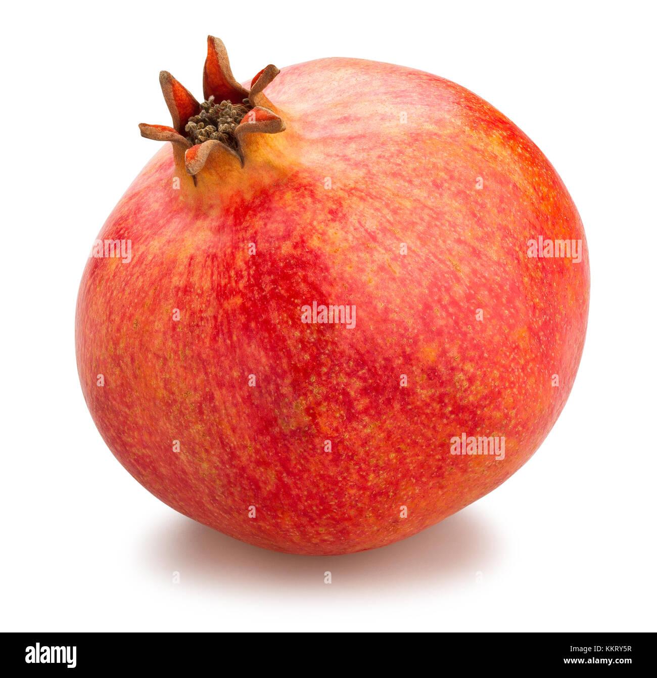 pomegranate path isolated - Stock Image
