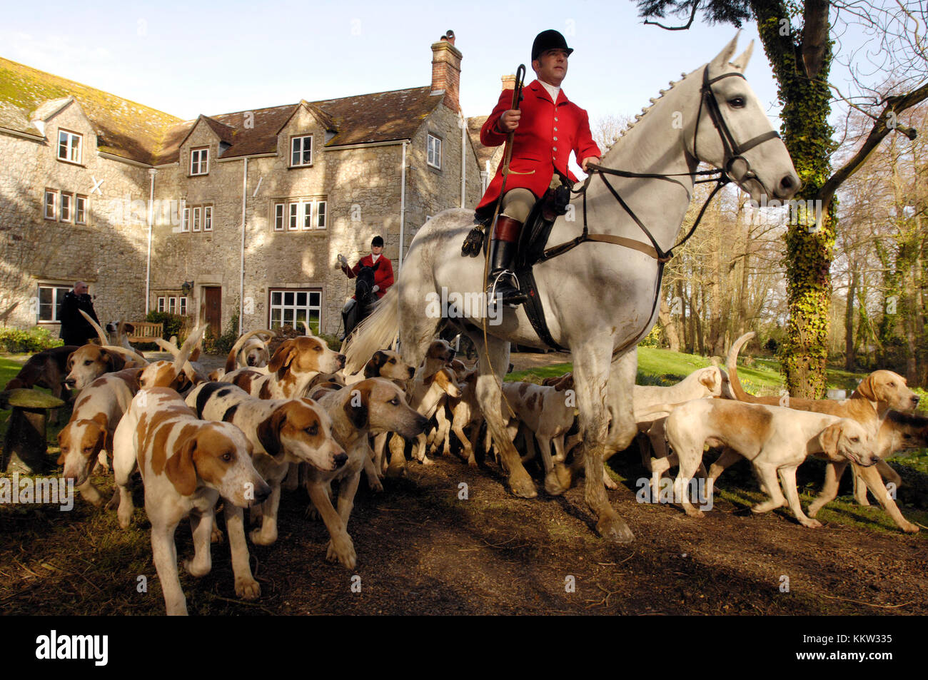 A huntsman dressed in a red jacket surrounded by fox hounds at a meeting of the traditional hunt with a country - Stock Image