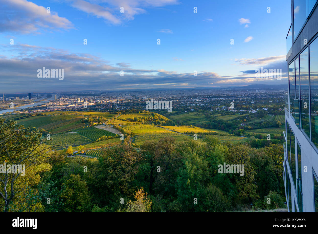 View From Mountain Kahlenberg To Vienna Danube Vineyards Right