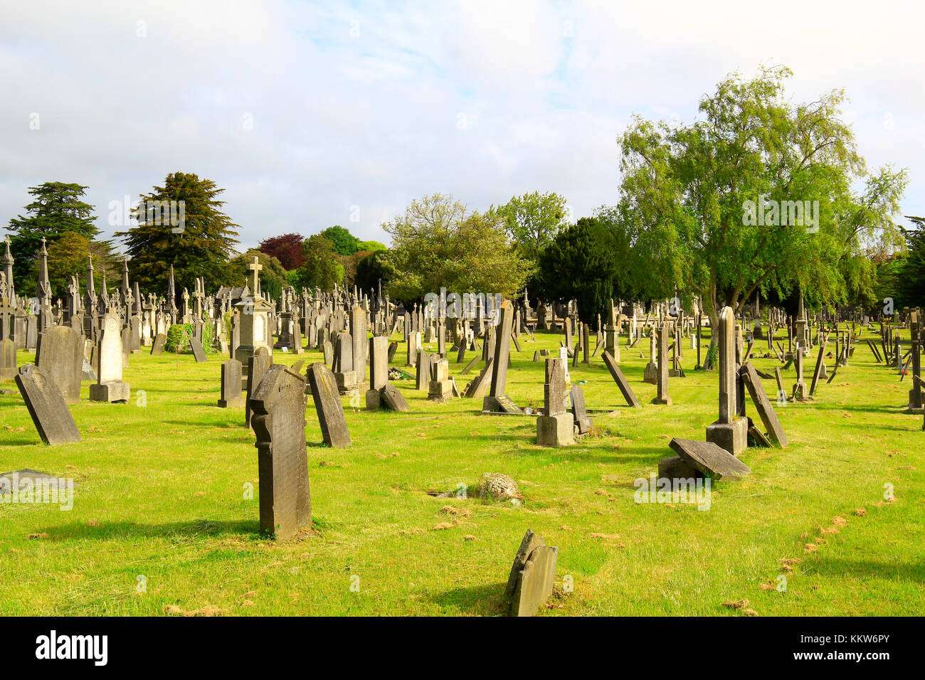 landscape of Irish cemetery full of stones of the Gothic period--- Ireland, Dublin - May 22, 2015: photograph of Stock Photo
