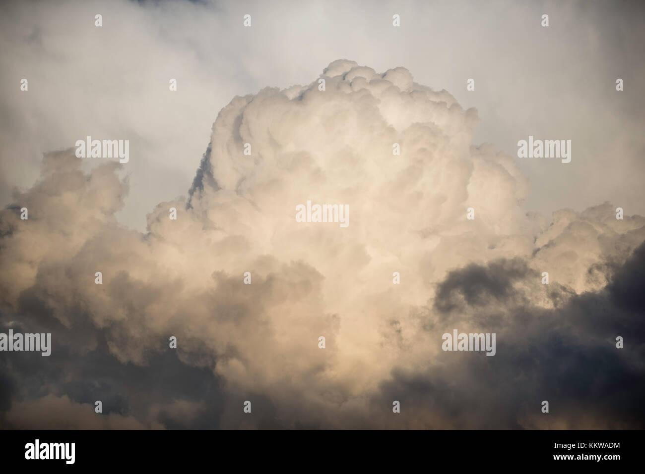 Cumulus congestus clouds, high elevation, Mount Evans Wilderness area, Colorado, USA by Bruce Montagne/Dembinsky - Stock Image
