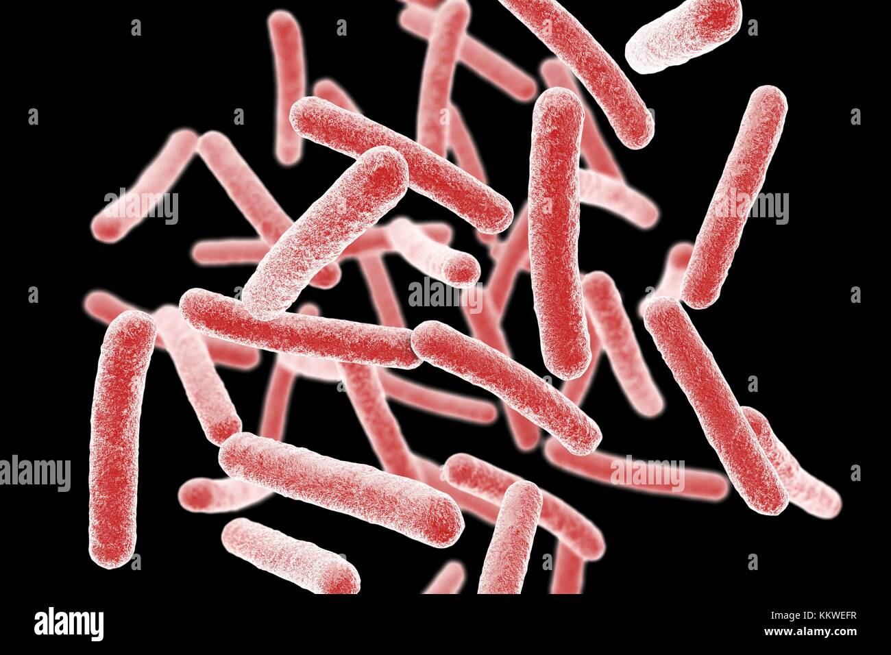 Mycobacterium chimaera bacteria, computer illustration. This bacterium has been found to colonise water in heater - Stock Image