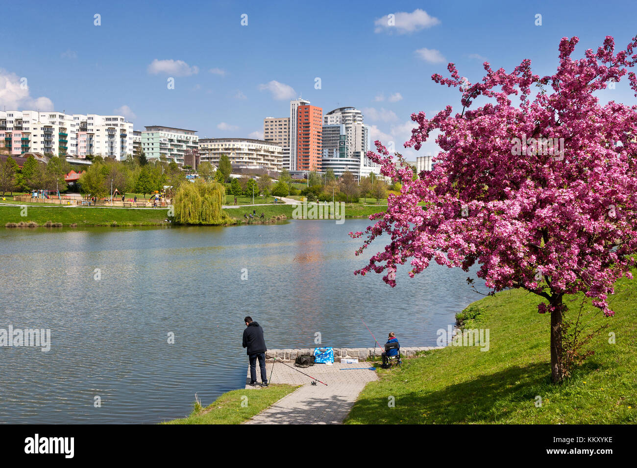 Nepomucký rybník, Hurka, Nove Butovice, Praha, Česká republika / Nepomuk pond, Nove Butonice residential district, Stock Photo
