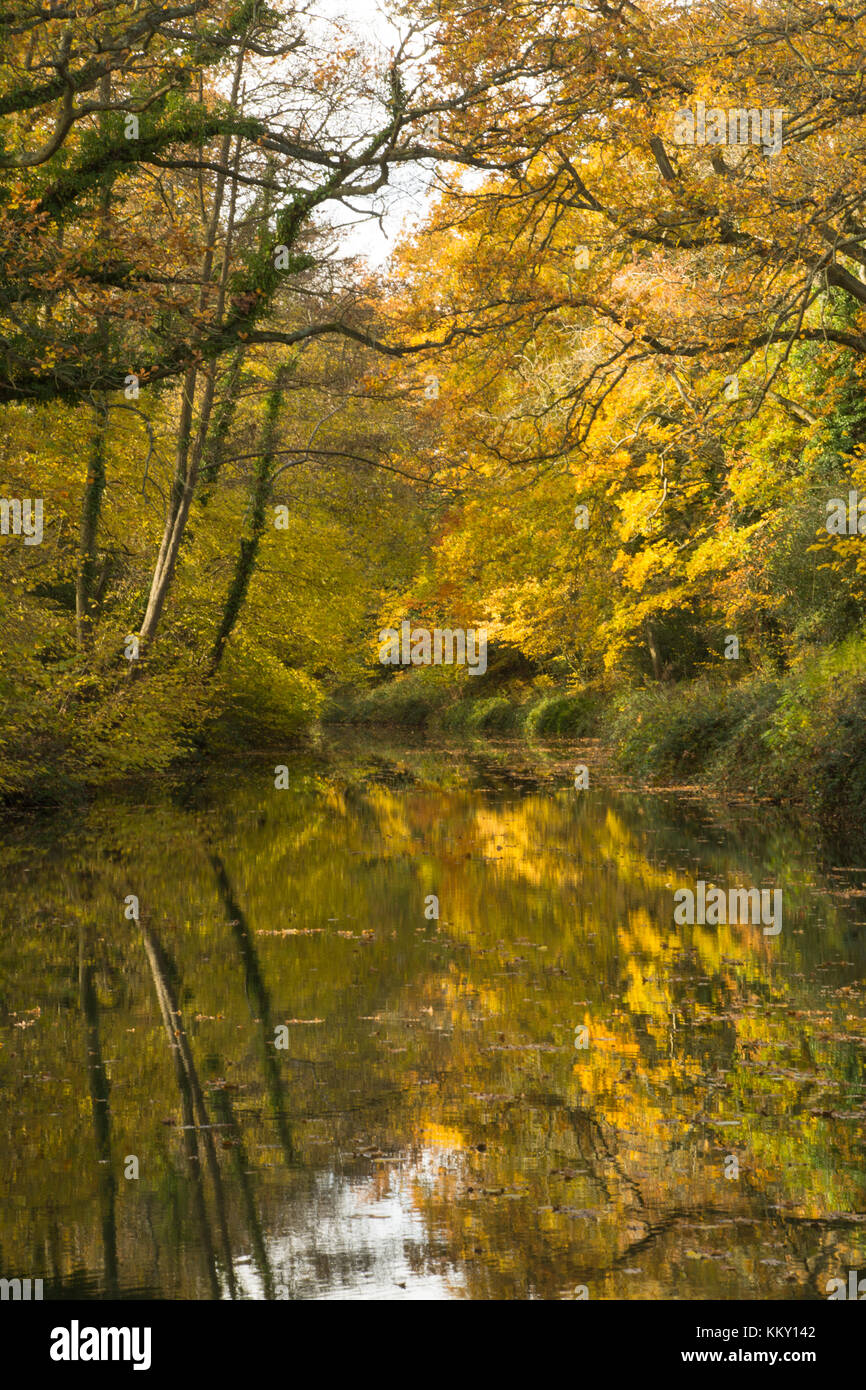 View of the Basingstoke Canal at Crookham in Hampshire with autumn colours - Stock Image