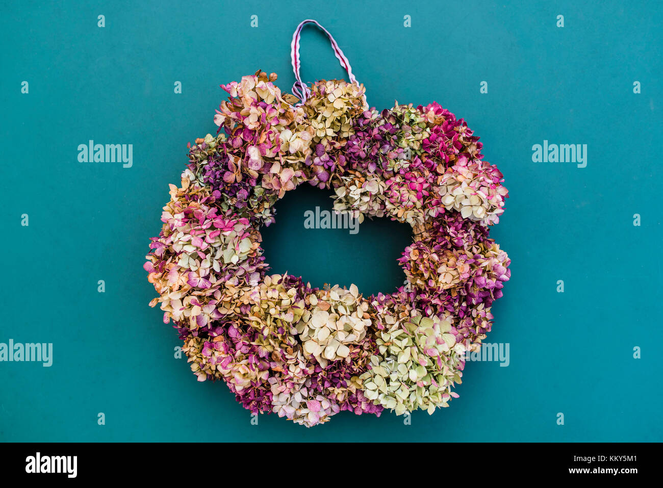 Still life, autumnal decoration, wreath with hydrangea blossoms - Stock Image