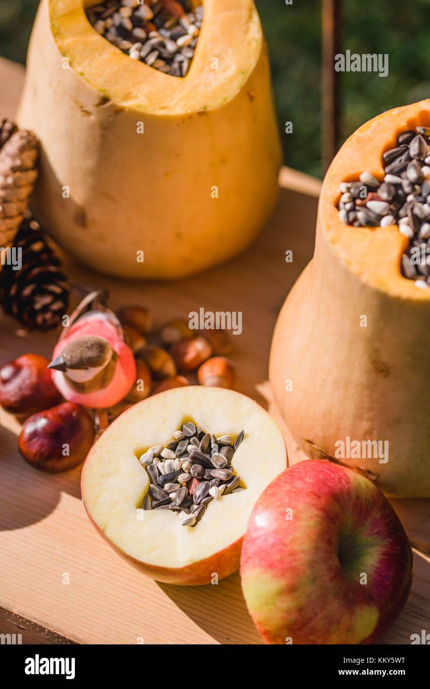 Garden, DIY, self-made bird feeder, pumpkins, apples, box, - Stock Image