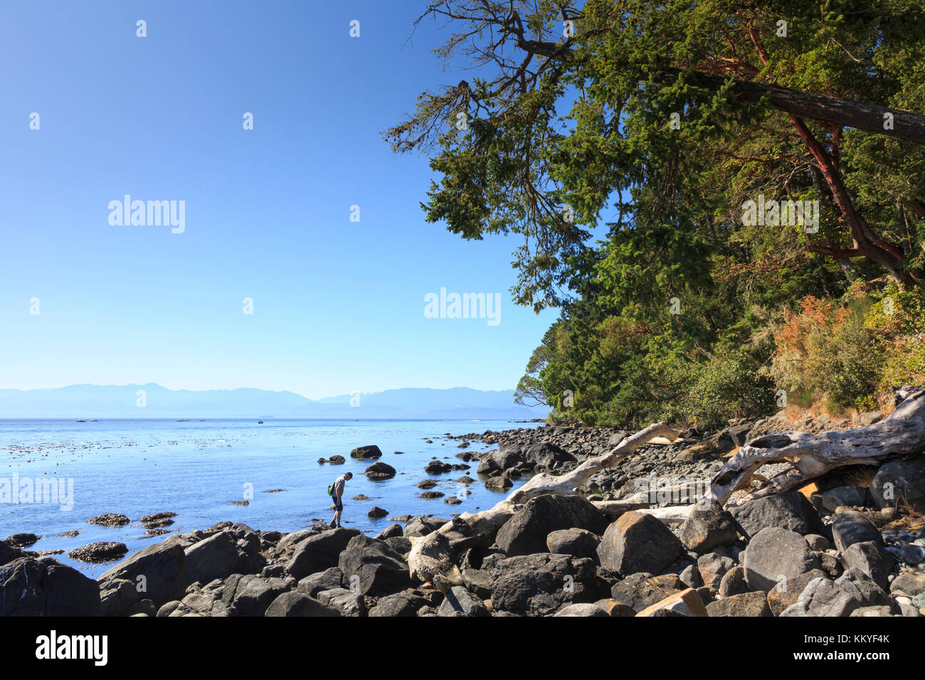 East Sooke Regional Park and The Strait of Juan de Fuca,  Sooke, Vancouver Island, British Columbia, Cananda - Stock Image
