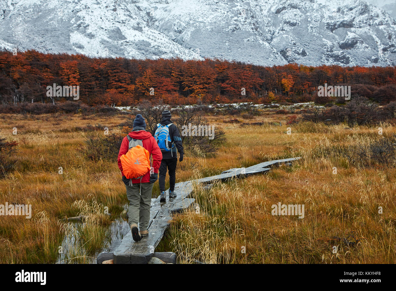 Hikers on boardwalk on track to Laguna de los Tres, Parque Nacional Los Glaciares (World Heritage Area), Patagonia, - Stock Image