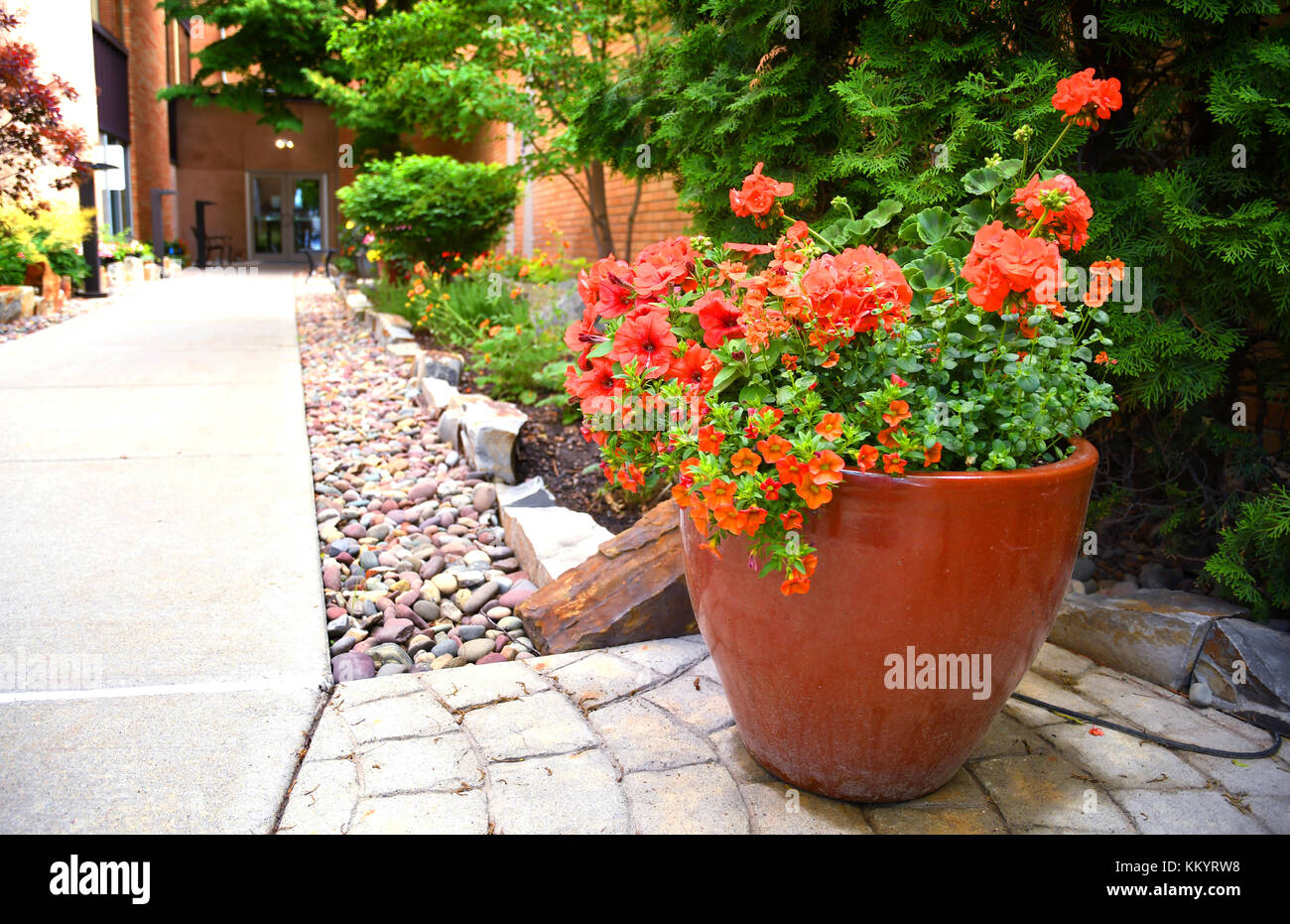 Flower pot full of petunias and geraniums in a corporate building garden - Stock Image