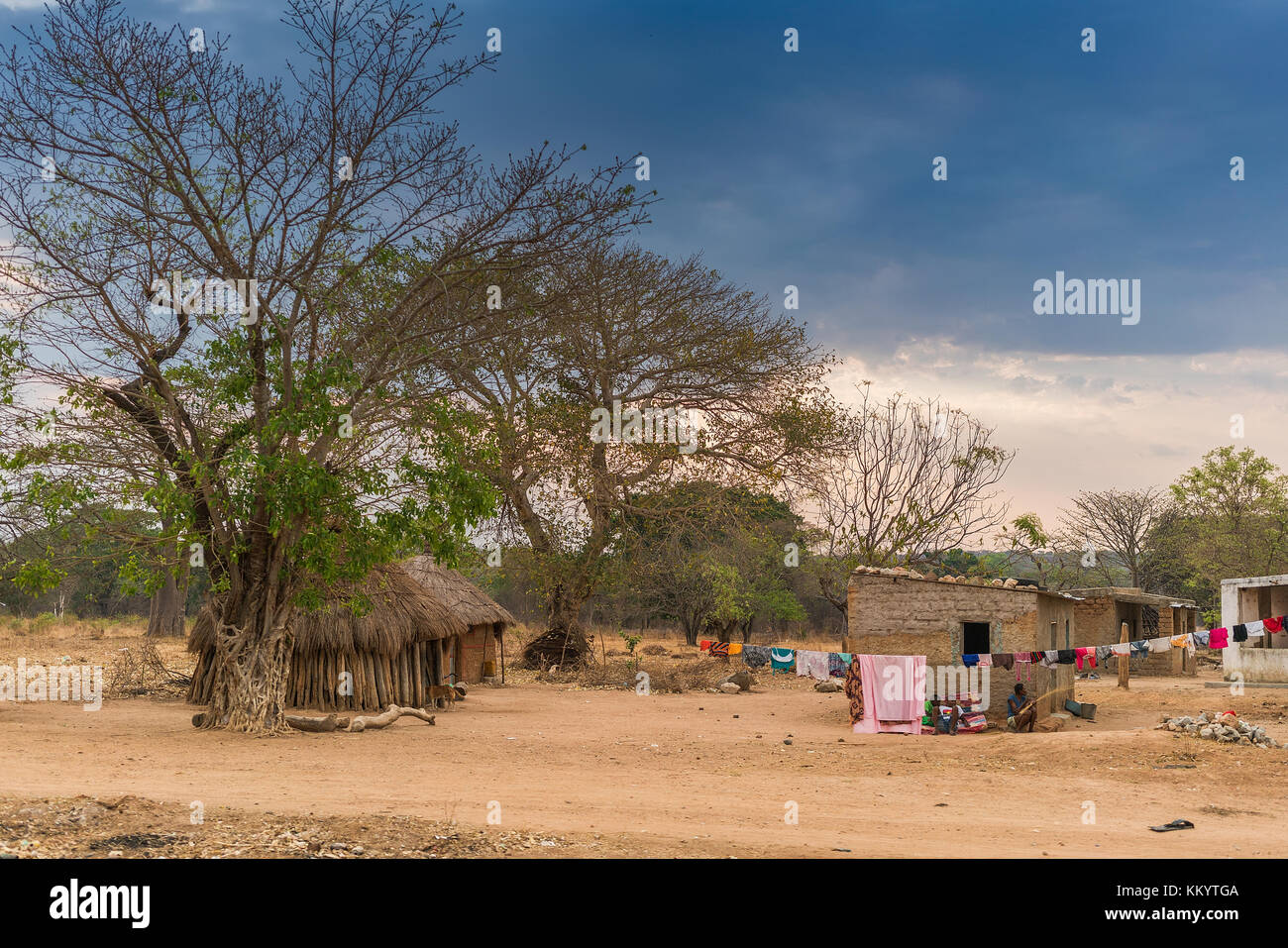 small African village with imbondeiros. Angola. - Stock Image