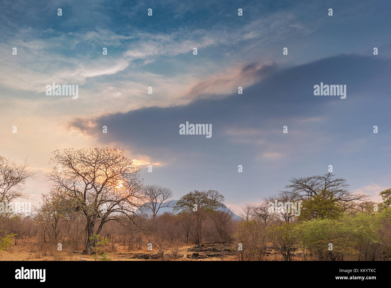 African landscape in Lubango, Angola with trees and dramatic sunset. - Stock Image