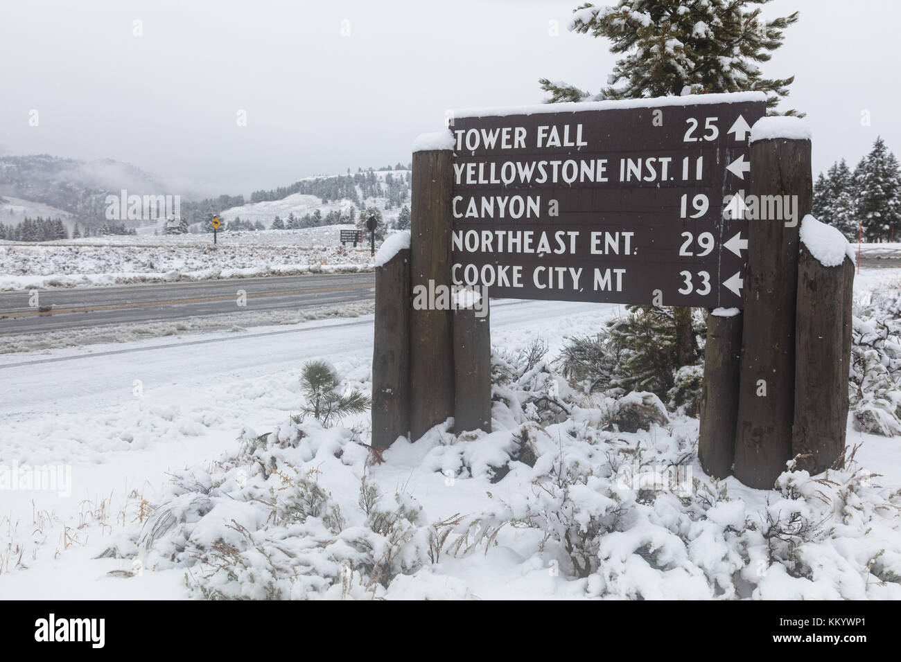 Snow Covers The Tower Roosevelt Area Welcome Sign At The Yellowstone Stock Photo Alamy