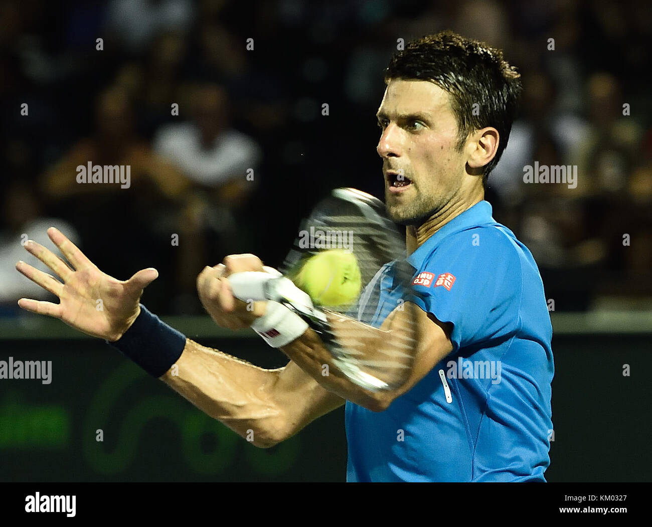 KEY BISCAYNE, FL - MARCH 25: Novak Djokovic at the Miami Open Day 6 at Crandon Park Tennis Center on March 25, 2016 - Stock Image