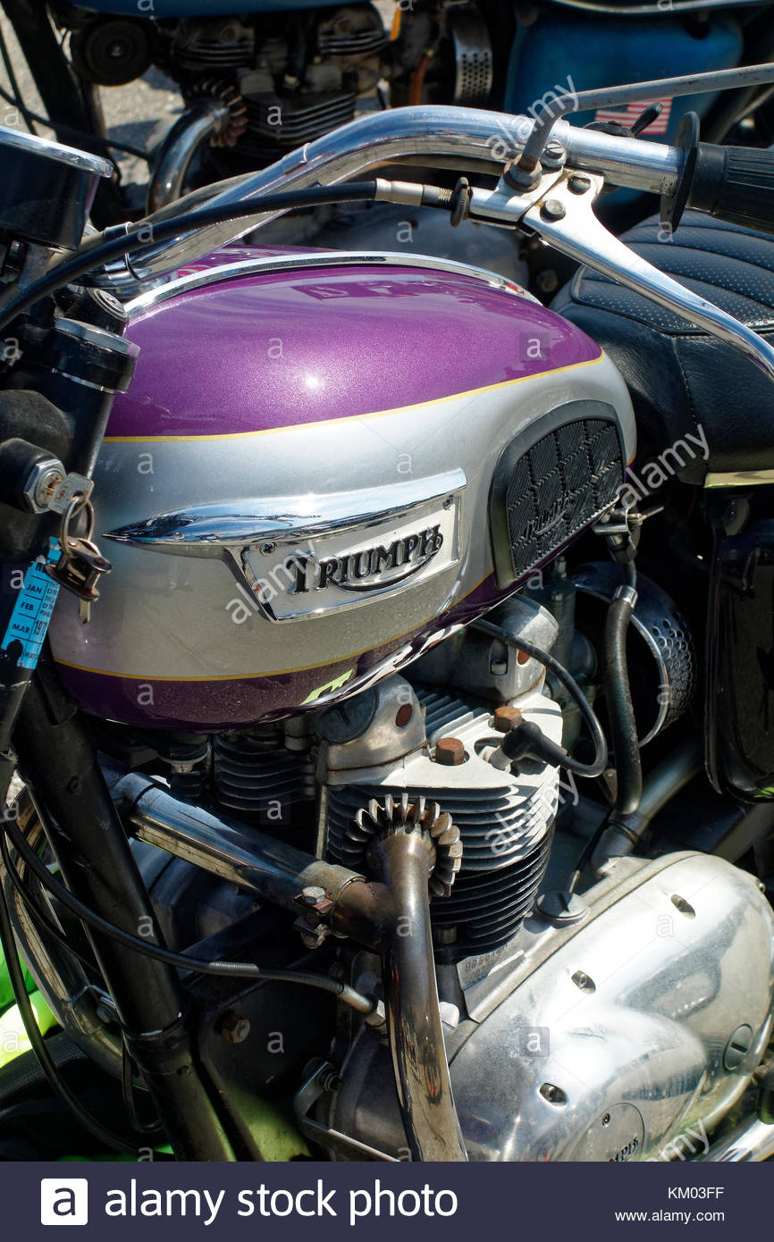 Triumph Daytona motorcycle at the annual meet, Owls Head Transportation Museum, Maine - Stock Image