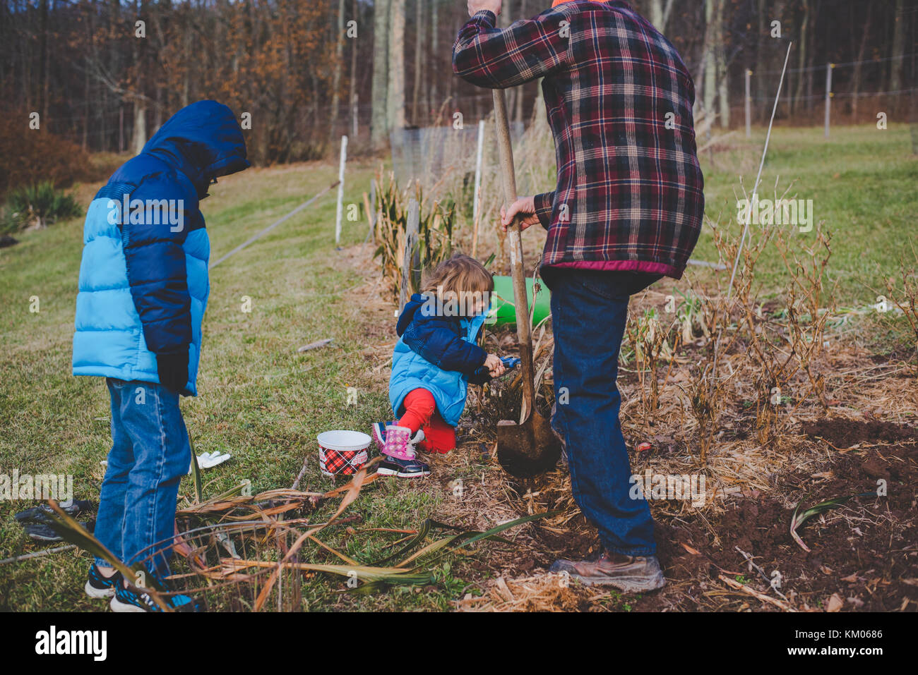 Children helping their grandfather dig in a garden during the winter months - Stock Image