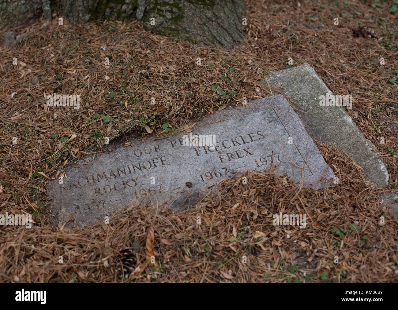 Pet Cemetery Stock Photos & Pet Cemetery Stock Images - Alamy