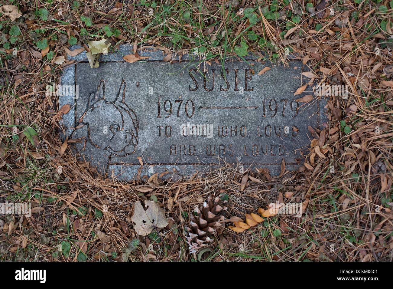 A Grave Marker At The Historical Memorial Pet Cemetery In