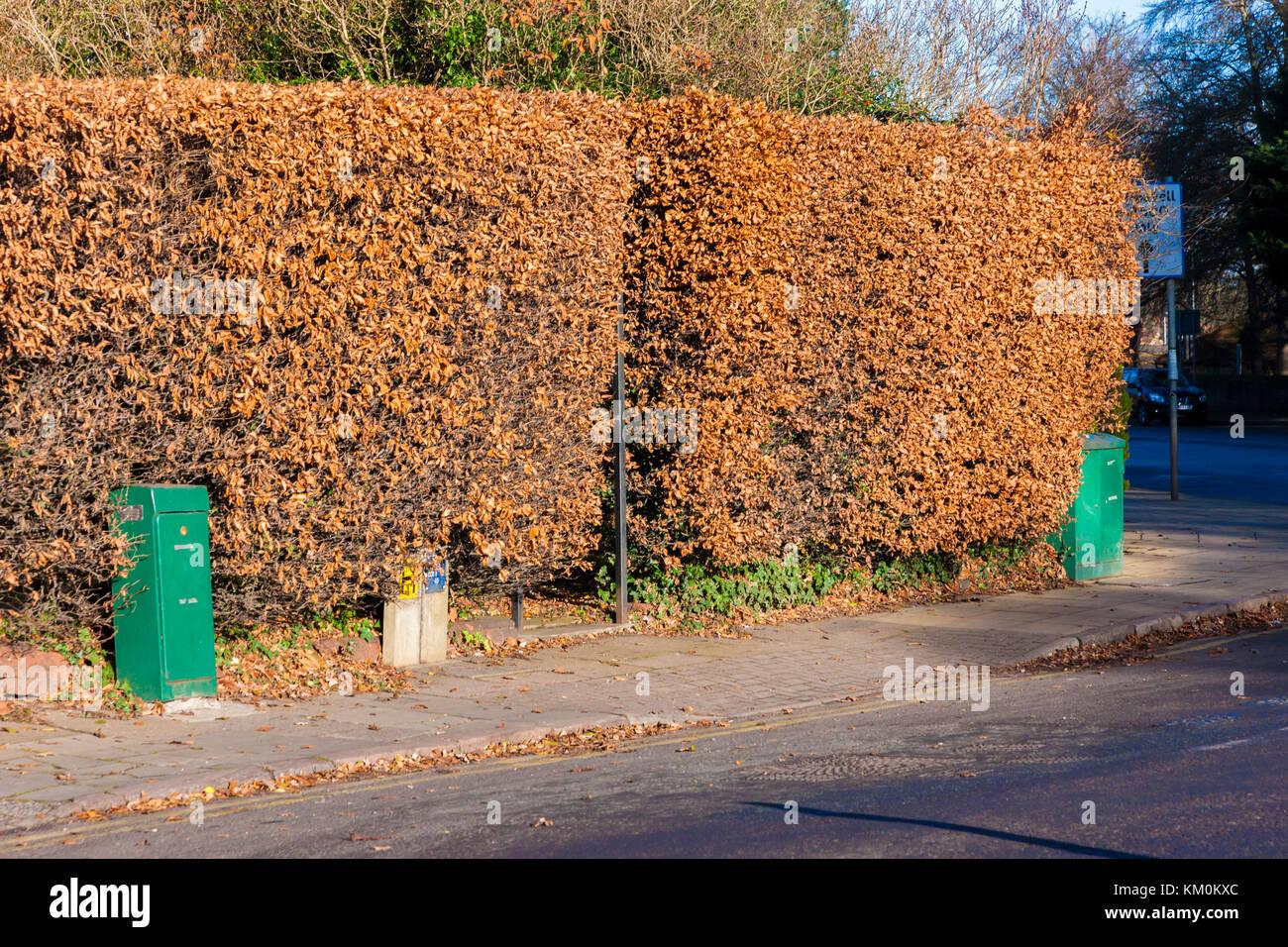 Wantage rd, Northampton, U.K. - Stock Image