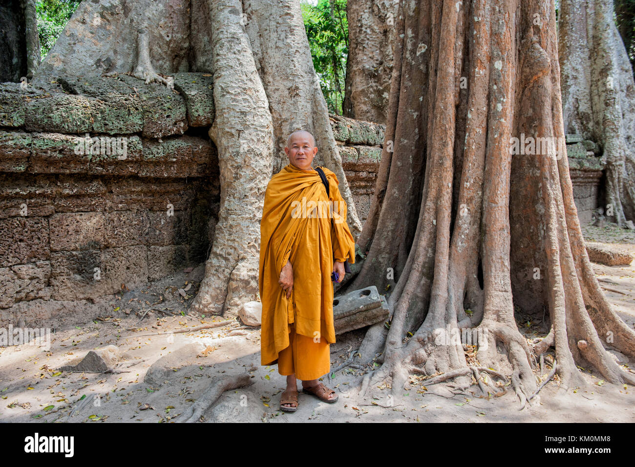 Buddhist monk posing at Ta Prohm in Siem Reap. Built in 12-13th century Ta Prohm temple was later the location for Stock Photo