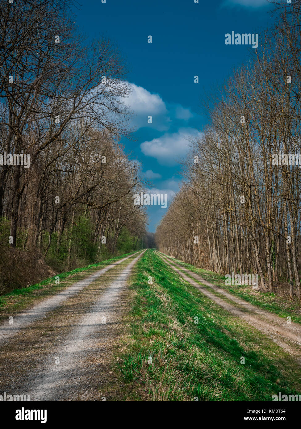 two parallel paths in spring - Stock Image