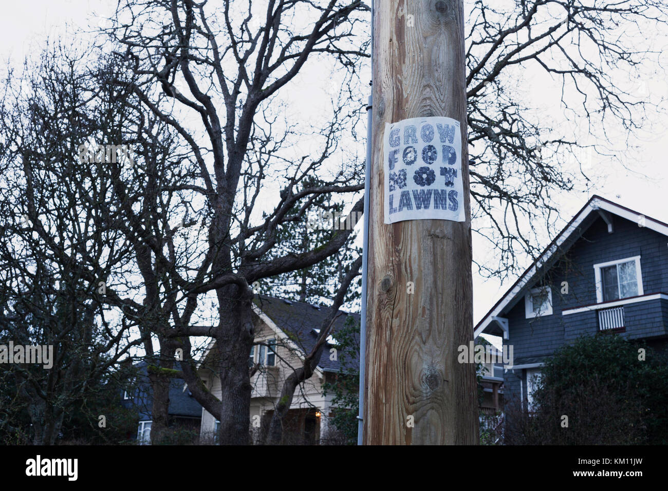 Grow food not lawns sign on power pole, Victoria BC Canada - Stock Image