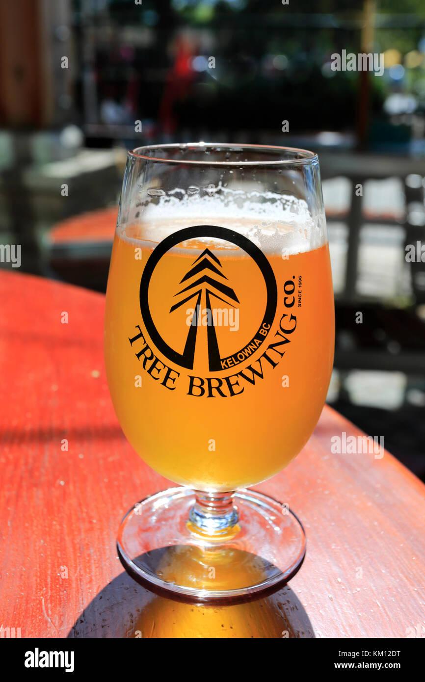 The Tree Brewing Company, Downtown Kelowna, Okanagan region, British Columbia, Canada - Stock Image