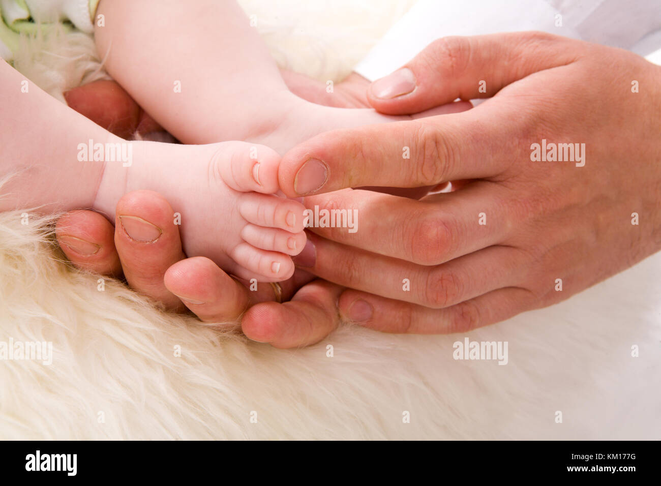 Baby's Feet in Father's Palms over white fur Stock Photo