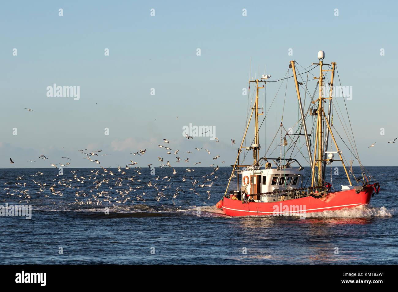 fishing vessel at sea - Stock Image