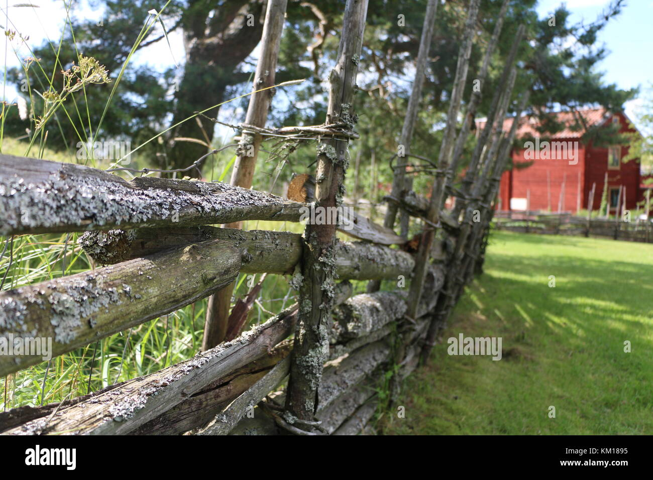 Traditional Swedish wooden fence with red farm house in the background - Stock Image