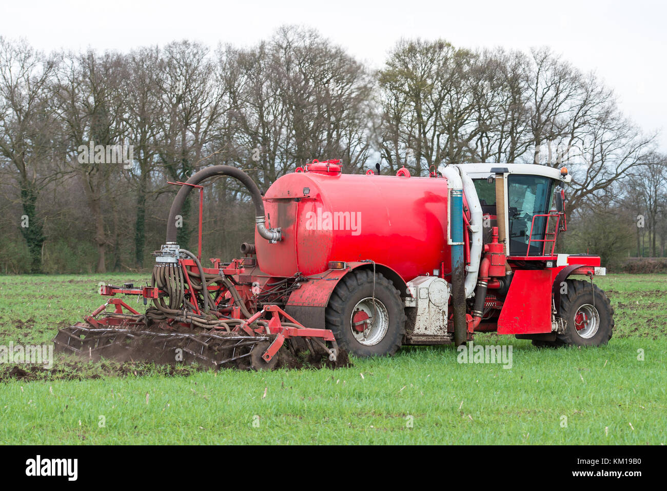 Injection of liquid manure with arable manure spreader in the Netherlands. - Stock Image