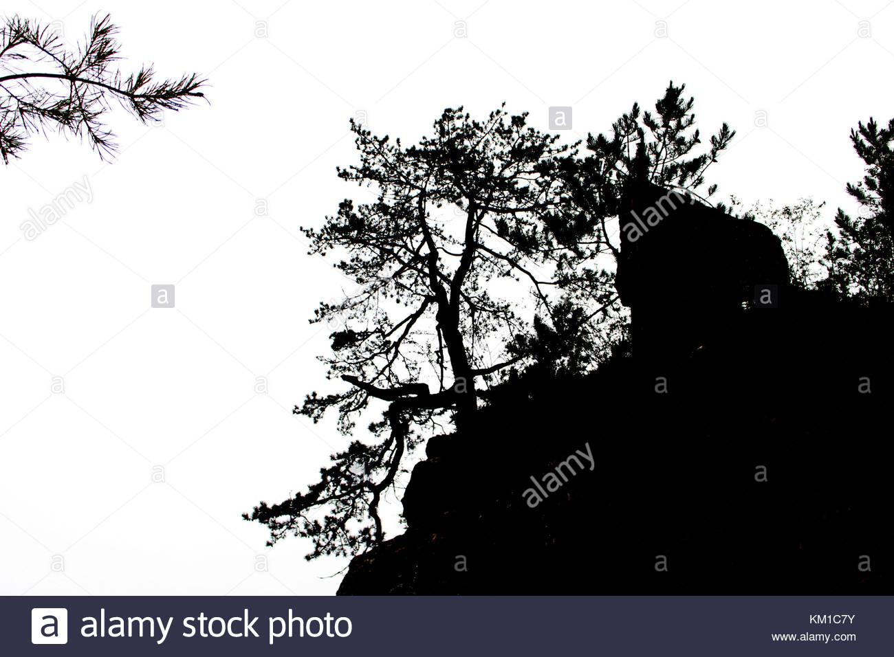Mountains, trees, silhouettes - Stock Image