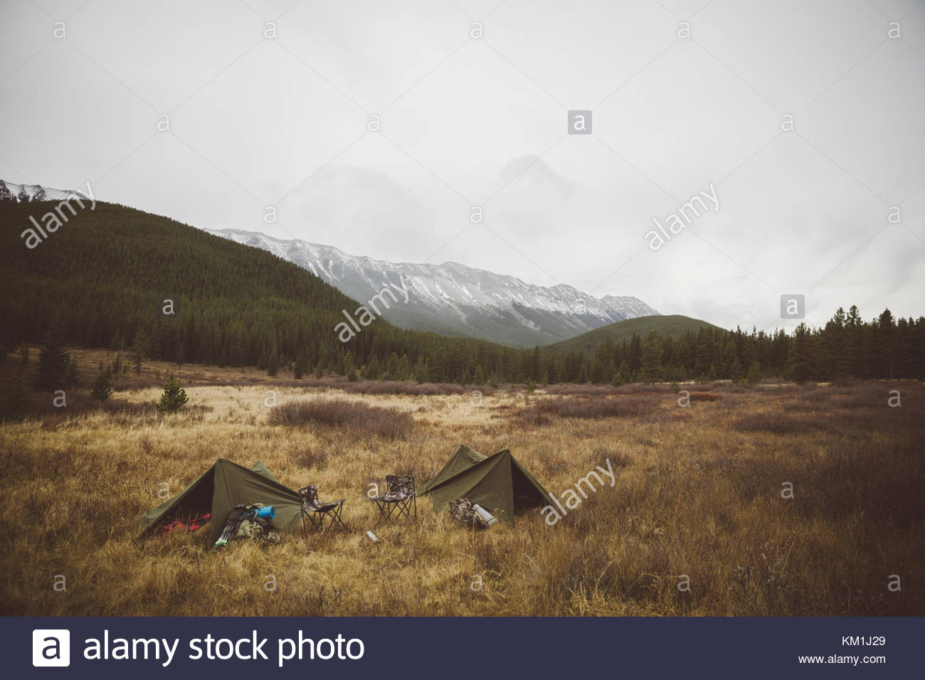 Hunting campsite tents in remote field below mountains - Stock Image