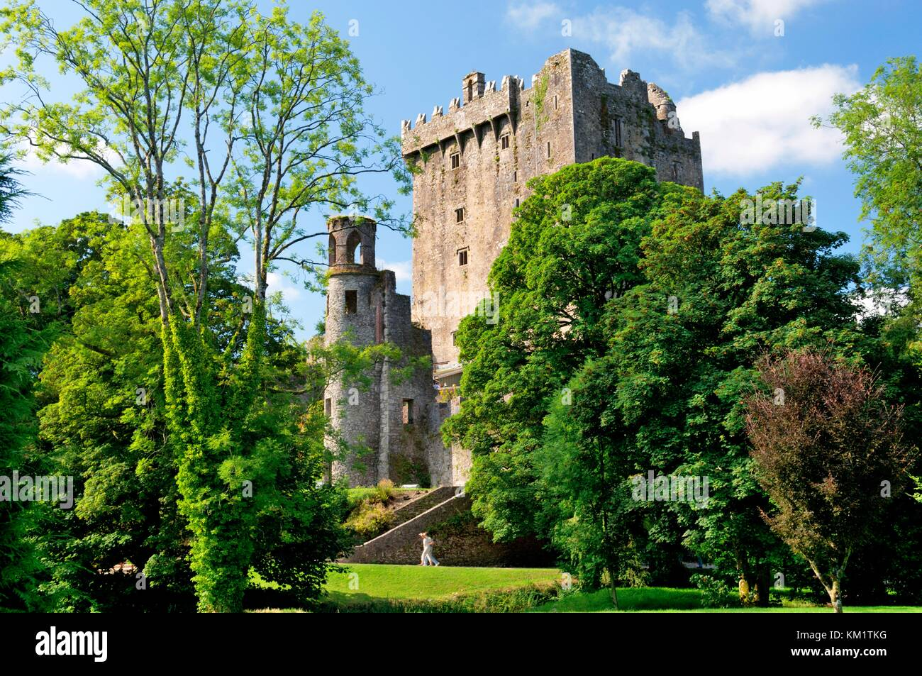 Blarney Castle, County Cork, Ireland Eire. The Blarney Stone sits in the battlements at the top of the castle keep. - Stock Image