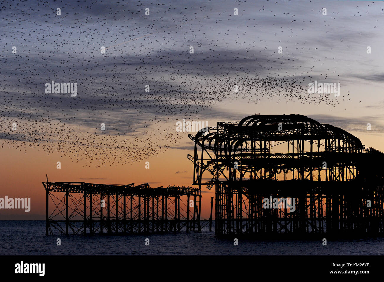 Murmuration over the ruins of Brighton's West Pier on the south coast of England. A flock of starlings performs aerial acrobatics at sunset. Stock Photo