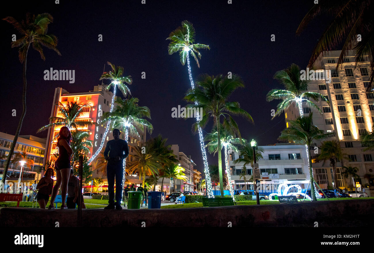 Miami Trees With Christmas Lights Stock Photos & Miami Trees With ...